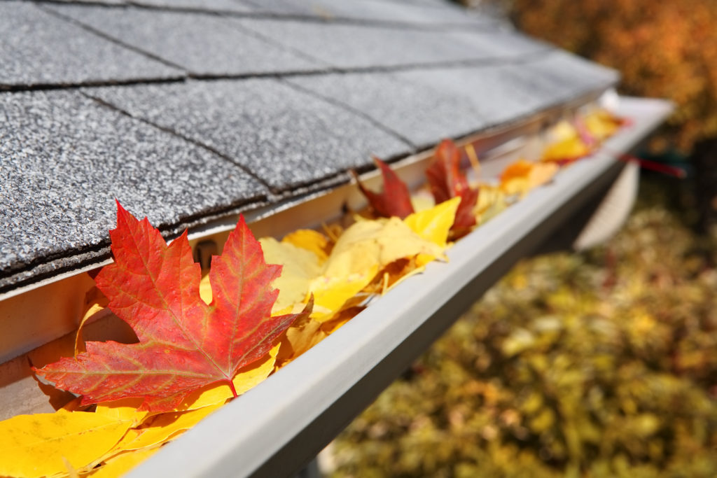 Why Cleaning Your Eavestroughs Is Important